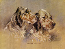 ENGLISH SETTER CHARMING DOG GREETINGS NOTE CARD TWO BEAUTIFUL DOGS HEAD STUDY