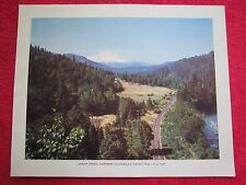 1940's SHASTA ROUTE VIEW, MOUNT SHASTA, NORTHERN CALIFORNIA 8x10 PRINT
