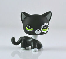 Littlest Pet Shop Black Short Hair Cat Green Eyes Cute Girl Child LPS Toys #2249