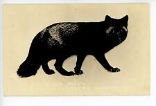 """""""For Silver Foxes"""" WP Chambers Taxidermy? RPPC Corwith IA Photo 1940s"""