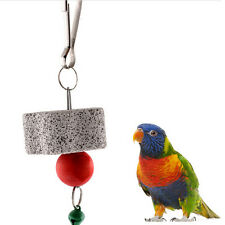 Parrot Bird Squirel Chew Bite Scratcher Bell Toy Teeth Grinding Parakeet Toys DS