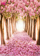 Pink alley Vinyl background Photography studio Photo Props backdrop 5X7FT 14-402