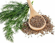 Cumin Herb 75 Seeds, 350 mg