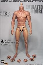 IN STOCK ZC Toys 1/6 Scale 3.0 Muscular Figure Body Similar to Hot Toys TTM19