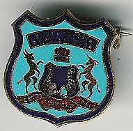 BLOEMFONTAIN SOUTH AFRICA BOWLING CLUB BADGE