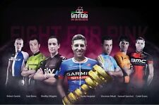 """GIRO D'ITALIA 2013 OFFICIAL """"FIGHT FOR PINK"""" CONTENDERS MINI POSTER"""