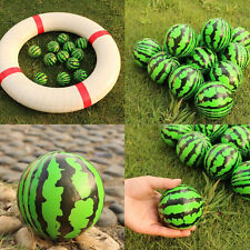 6.3 cm Watermelon Shaped Hand Wrist Exercise Stress Relief Squeeze Foam Ball
