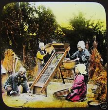 COLOUR Glass Magic Lantern Slide JAPANESE FARMERS SIFTING RICE C1910 JAPAN PHOTO