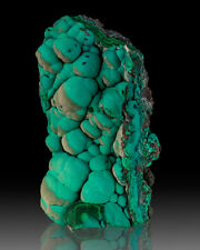 "4.8"" Botryoidal Turquoise CHRYSOCOLLA w/Partial TanGray Overcoat Congo for sale"