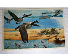 Rare 1960s REMINGTON ARMS Print BOB KUHN - Canada Geese on the Mississippi