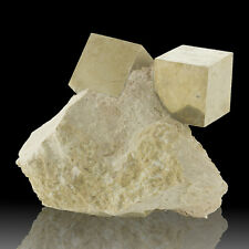 "3.7"" PYRITE CUBES 2 Razor Sharp Crystals to1.7"" on Matrix Navajun Spain for sale"