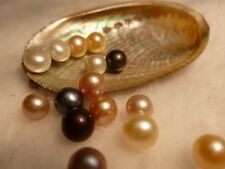 TEN AKOYA OYSTERS WITH PEARLS!  GREAT GIFT IDEA! STALKING STUFFER