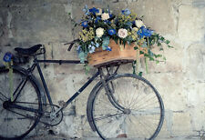 Old Bicycle & Flowers * home decor * LARGE A3 SIZE QUALITY CANVAS ART PRINT