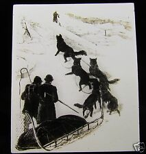Glass Magic Lantern Slide DOG SLEDGE TEAM C1900 HUSKIES DRAWING