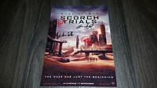 "THE MAZE RUNNER 2 : SCORCH TRIALS PP SIGNED 12""X8"" A4 PHOTO POSTER DYLAN O'BRIEN"