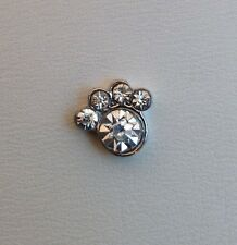 Dog Paw Crystal Floating Charm for Glass Memory Lockets #089