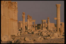 466073 Palmyra Syria A4 Photo Print
