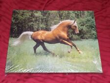 Springbok Untamed Beauty jigsaw puzzle NEW never opened 0ver 500 PIECES HORSE