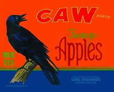 Medford Oregon Caw Crow Raven Black Bird Apple Fruit Crate Label Art Print