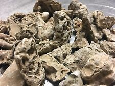 English Tufa Rock Stone Rare Aquarium Fish Tank Alpine Decorations 65 Rocks ZK
