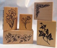PSX Clematis Corner Tulip Daffodil Morning Glory Flower Ivy Vine 5 Rubber Stamps