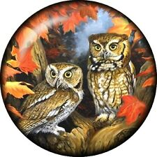 Snap button Owl Fall Leaves 18mm charm chunk