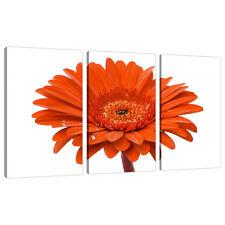 Split Canvas 3 Piece Orange Floral Multi Panel Triple Part Set 3140