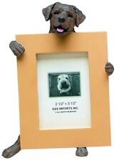 Labrador Retriever Chocolate Dog Picture Photo Frame