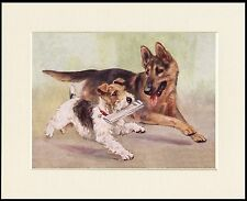 GERMAN SHEPHERD AND FOX TERRIER GREAT LITTLE DOG PRINT MOUNTED READY TO FRAME
