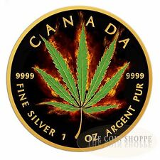 BURNING MARIJUANA SATIVA 2016 1 oz Silver Maple Leaf Coin Ruthenium and 24K Gold