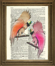 """DICTIONARY PAGE PRINT: Exotic Pink Birds of Paradise Vintage Antique Art (8x10"""")"""