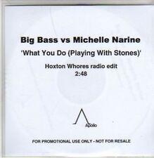 (AC219) Big Bass vs Michelle Narine, What You Do- DJ CD
