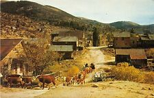 SILVER CITY IDAHO CATTLE ROAM THE STREETS OF GHOST TOWN POSTCARD c1960s