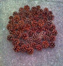 150 Kiefernzapfen / Tannenzapfen für Adventskranz / Weihnachtsdeko Naturmaterial