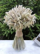 Dried Flowers Bouquet Wheat & Oat Sheaf Natural Table Decoration 12""