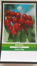 4ft live Bing Cherry Tree Sweet Fruit Cherries Trees Plants Garden Orchard Plant