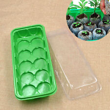 Seedling Nursery Propagation Tray Box Sprout Plastic Pot Plant Garden 10 Holes