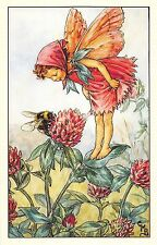 Flower Faires Postcard Cicley Mary BarkerThe Red Clover Fairy Lot1