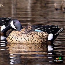 NEW BANDED BLOCKS LIFESIZE FLOATING BLUE WING TEAL DUCK DECOYS 6 PACK