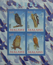 Birds / Owl Falcon Woodpecker Common Starling m/s Malawi 2008 MNH IMPERF #F209