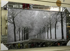 116cm-Black & white Picture of the woods with crystals,Liquid Art & Mirror Frame