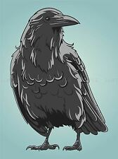 ILLUSTRATION BIRD CROW RAVEN ROOK BEAK FEATHERS POSTER ART PRINT VE046A