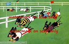 Vintage Cute Racing Dressed Dachshund Dog Dogs on Track~NEW Large Note Cards