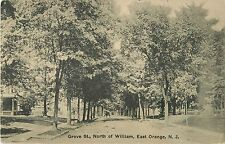 The View Down A Tree-Shaded Grove Street, North of William, East Orange NJ 1911