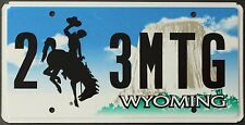 Nummernschild USA Wyoming Cowboy Bronco plaque d'immatriculation TARGA Devil