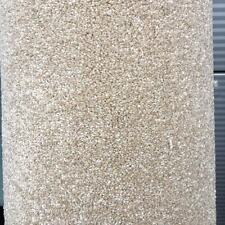 Carpet Remnant Roll End Carefree Tones Sand / Beige 4x2.00m Cheshire
