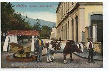 PORTUGAL MADEIRE Madeira funchal carro de bois attelage boeufs