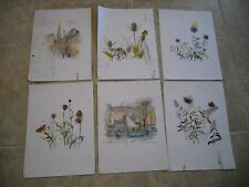 SET OF 6 MADS STAGE DENMARK - ART PAINTING PRINTS ESTATE FRESH BOATS FLOWERS