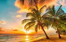 Incorniciato stampa-tropicali SCENIC vista dell' oceano & Spiaggia (PICTURE POSTER albero)