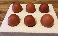 6 x Fertile Hatching Chicken Eggs - Browns Mixed Breeds